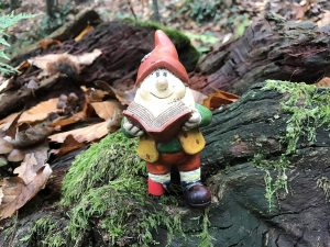 geocaching_lutin